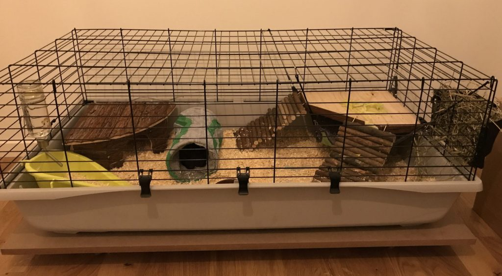 Small guinea pig cage with a gray plastic bottom