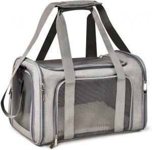 Guinea pig travel carrier with mesh sides and carrying handles